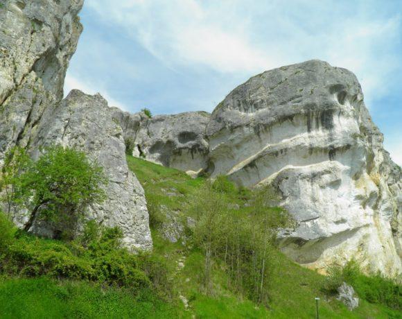 Le Saussois (Bourgogne)